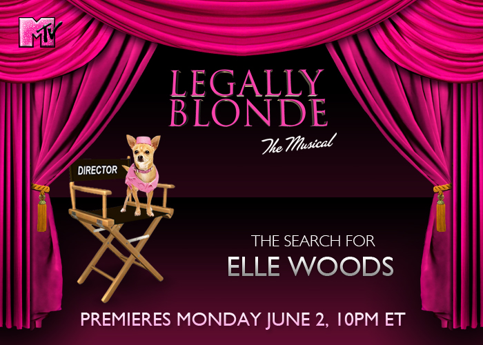 MTV – Legally Blonde Banner